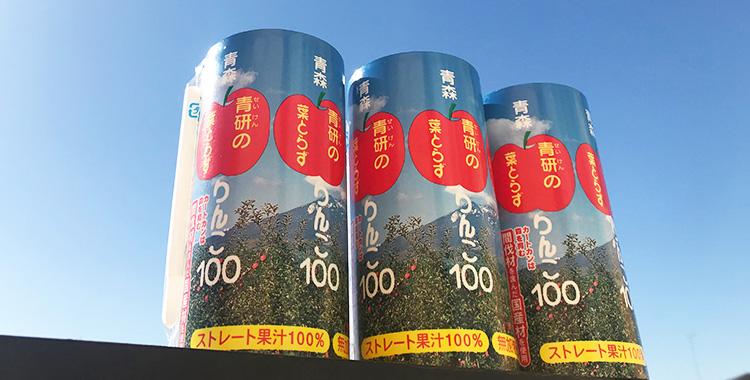 青森 青研の葉とらずりんご100
