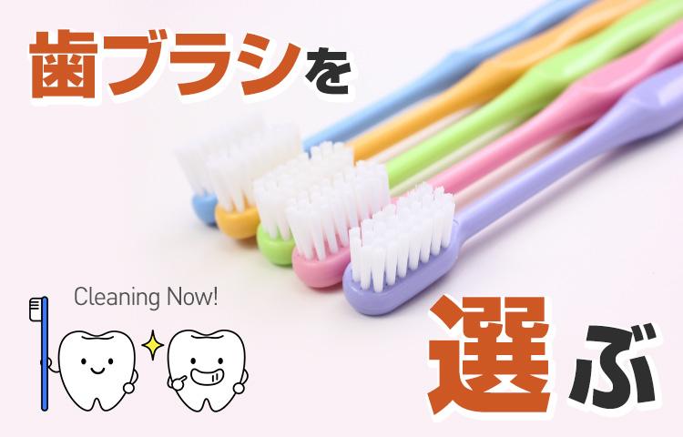 歯ブラシを選ぶ