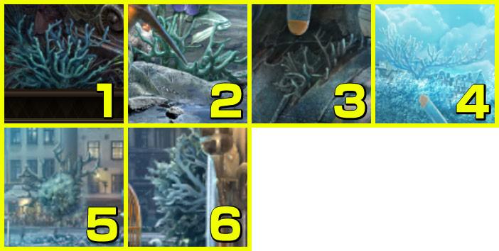 墜落現場:サンゴ